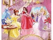 3D fototapeta Walltastic Princezny 41783 | 305x244 cm Fototapety pro děti