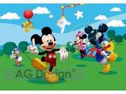Fototapeta AG Mickey Mouse FTDS-0253 | 360x254 cm Fototapety pro děti
