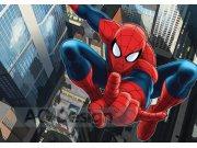 Fototapeta AG Spiderman FTDS-2209 | 360x254 cm Fototapety pro děti