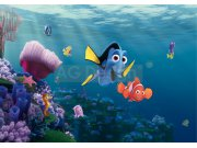Fototapeta AG Nemo FTDS-2223 | 360x254 cm Fototapety pro děti
