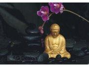 Fototapety papírové AG Design Budha FTXXL-0193, rozměry 360 x 270 cm Fototapety na zeď