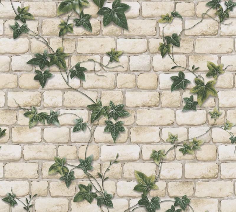 Levná papírová tapeta na zeď břečťan na zdi 9804-34 - Tapety skladem