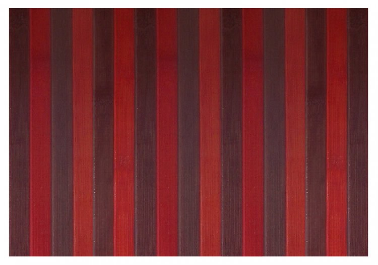 Bambusový obklad Zanzibar 0005-30, rozměry 0,8 x 10 m