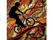 Vliesová fototapeta Dimex Červený cyklista L-423 | 220x220 cm Fototapety vliesové