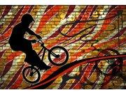 Vliesová fototapeta Dimex Kolo červené XL-395 | 330x220 cm Fototapety vliesové