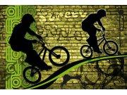 Vliesová fototapeta Dimex Kolo zelené XL-396 | 330x220 cm Fototapety vliesové