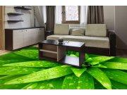 Samolepicí fototapeta na podlahu Listy FL-255-021, 255x170 cm Samolepící fototapety - Na podlahu
