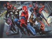Fototapeta AG Spiderman FTDM-0751 | 160x115 cm Fototapety pro děti