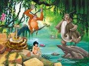 Fototapeta AG Kniha Džunglí FTDNXXL-5045 | 360x270 cm Fototapety pro děti