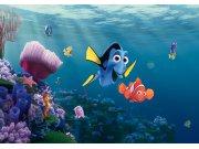 Fototapeta AG Nemo FTDNXXL-5061 | 360x270 cm Fototapety pro děti