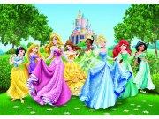 Fototapeta AG Princezny FTDNXXL-5067 | 360x270 cm Fototapety pro děti