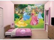 3D fototapeta Walltastic Disney Princezny 43800 | 305x244 cm Fototapety pro děti