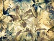 Fototapeta AG Lillie FTNS-2444 | 360x270 cm Fototapety vliesové