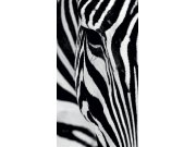 Foto závěs Zebra FCSL-7519, 140 x 245 cm Závěsy