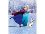 3D fototapeta Walltastic Frozen 43909 | 203x243cm Fototapety pro děti