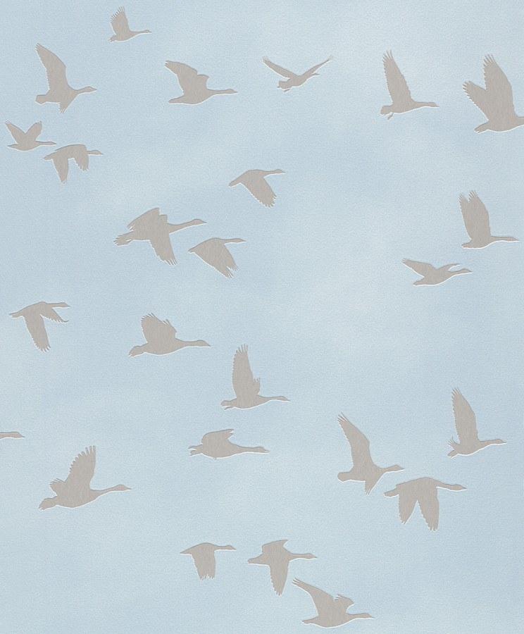 Tapety na zeď Kids & Teens ptáci 503357 - Výprodej