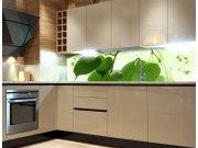 Fototapeta do kuchyně Zelené listy KI-260-010, 260x60 cm Fototapety skladem