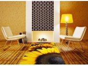 Samolepicí fototapeta na podlahu Slunečnice FL-85-005, 85x170 cm Samolepící fototapety