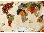 Fototapeta AG Mapa světa s koření FTNXXL-2484 | 360x270 cm Fototapety vliesové - Vliesové fototapety AG