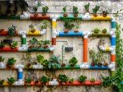 Fototapeta AG Květinová stěna FTNXXL-2488 | 360x270 cm Fototapety vliesové