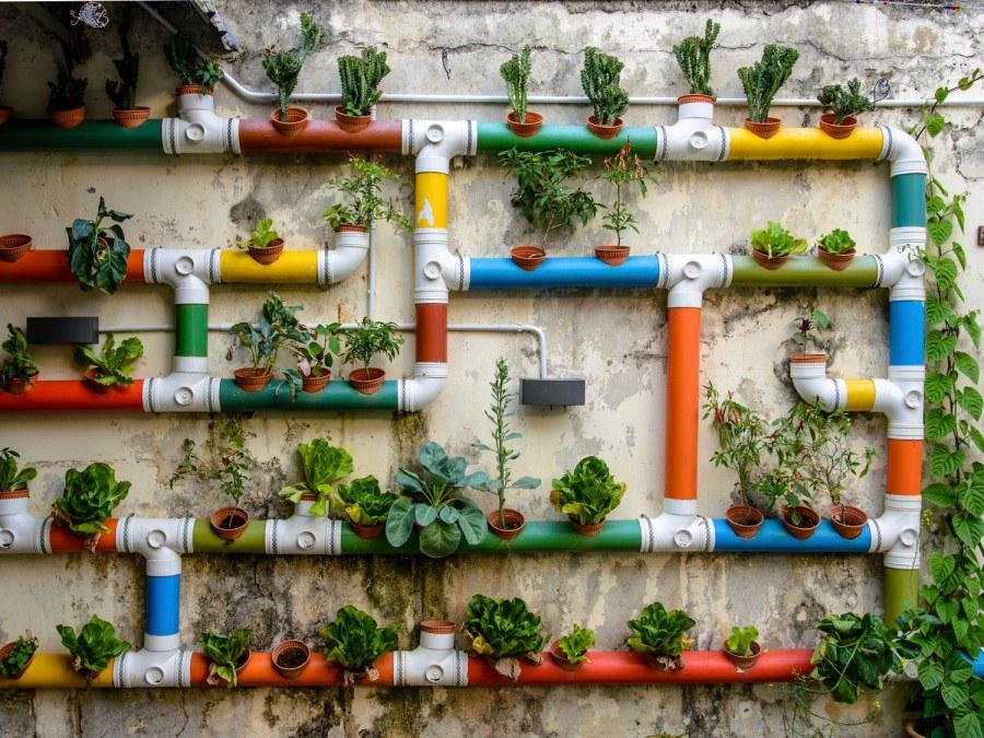 Fototapeta AG Květinová stěna FTNXXL-2488 | 360x270 cm - Vliesové fototapety AG