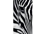 Foto závěs Zebra FCPL-6519, 140 x 245 cm Závěsy