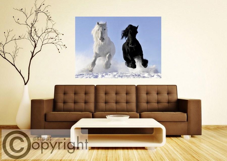 Fototapeta AG Bílý a černý kůň FTNM-2691 - Fototapety na zeď