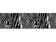 Samolepící bordura Zebra WB8205 Samolepící bordury