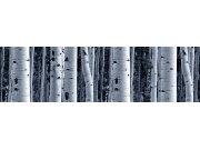 Samolepící bordura Břízový les WB8207 Samolepící bordury