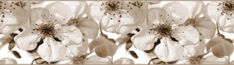 Samolepící bordura Jabloňový květ WB8216 - Samolepící bordury