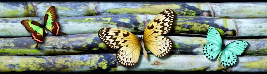 Samolepící bordura Motýli WB8238 - Samolepící bordury
