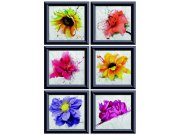 Samolepky na zeď Květiny v rámech F1059 Samolepící dekorace na zeď