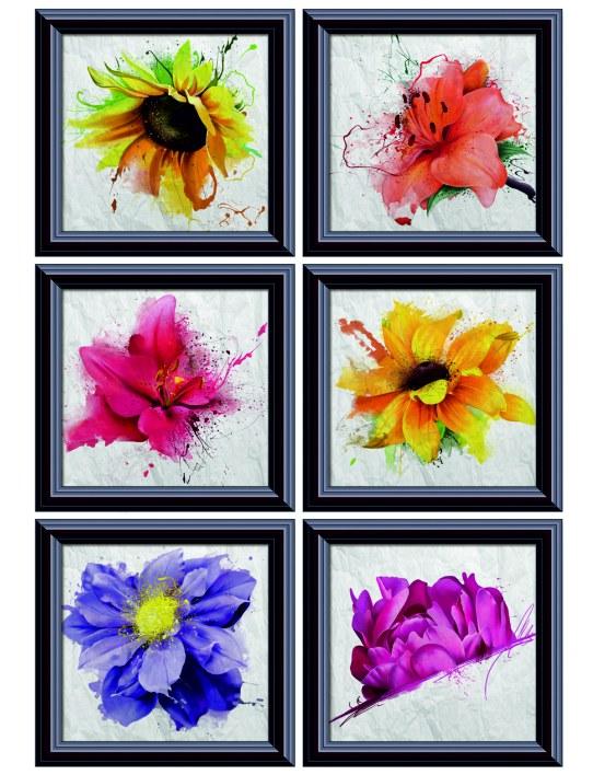 Samolepky na zeď Květiny v rámech F1059 - Samolepící dekorace na zeď