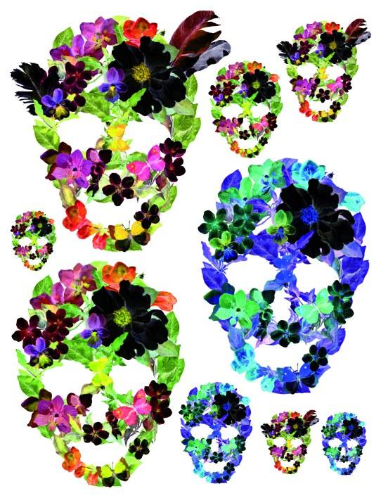 Samolepky na zeď Květinové masky F1060 - Samolepící dekorace na zeď