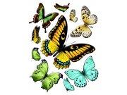 Samolepky na zeď Motýli F1069 Samolepící dekorace na zeď