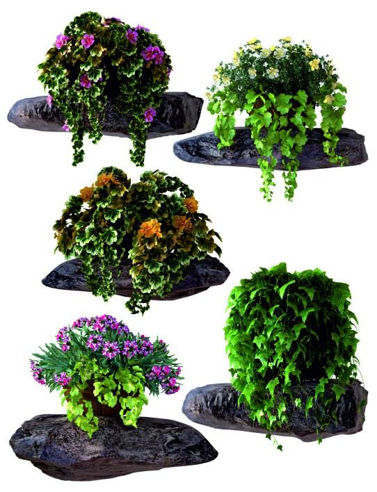 Samolepky na zeď Květiny na kameni F1070 - Samolepící dekorace na zeď