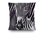 Dekorativní polštář Zebra CN-3605, 45 x 45 cm Dekorativní polštáře