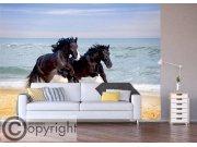Fototapeta Cválající koně FTNS-1260 Fototapety vliesové