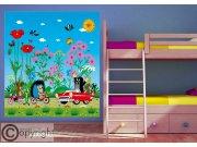 Fototapeta vliesová Krtek a autíčko FTDNXL-5146 | 180x202 cm Fototapety pro děti