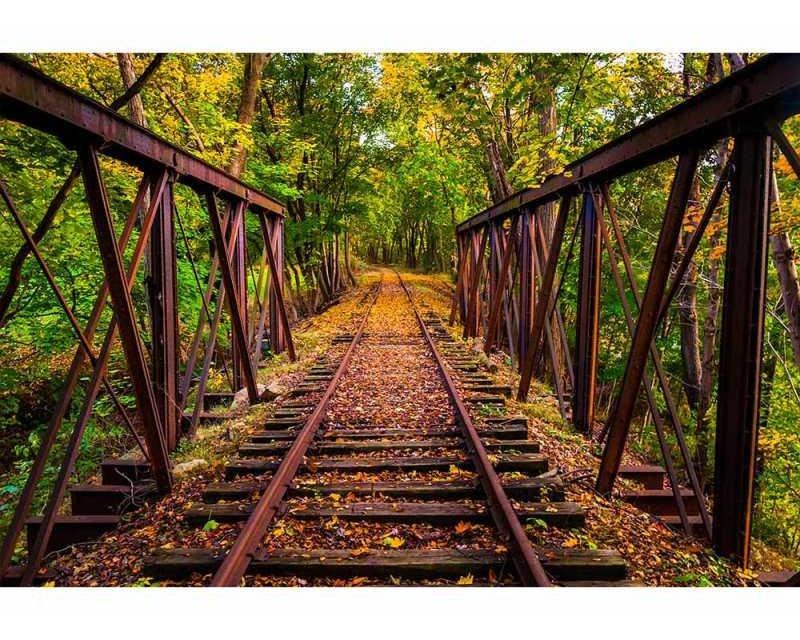 Vliesové fototapety na zeď Železnice v lese | MS-5-0055 | 375x250 cm - Fototapety vliesové