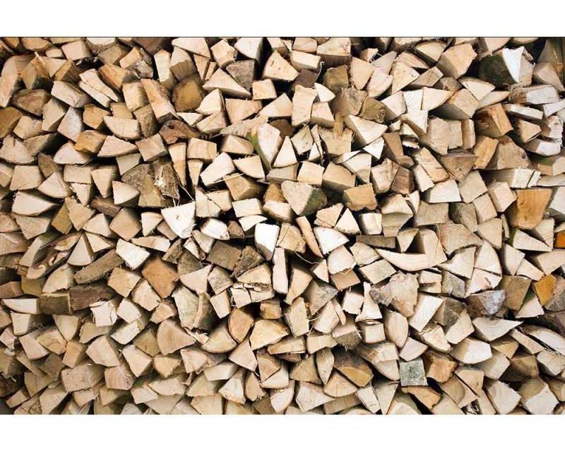 Vliesové fototapety na zeď Dřevěná polena | MS-5-0161 | 375x250 cm - Fototapety vliesové