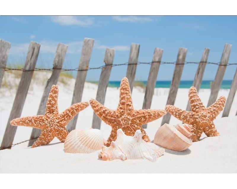 Vliesové fototapety na zeď Hvězdice na pláži | MS-5-0206 | 375x250 cm - Fototapety vliesové