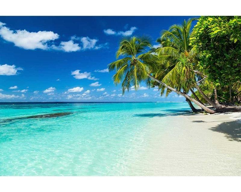 Vliesové fototapety na zeď Tropický ráj | MS-5-0215 | 375x250 cm - Fototapety vliesové