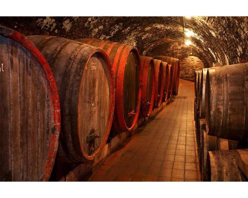 Vliesové fototapety na zeď Sudy s vínem | MS-5-0247 | 375x250 cm - Fototapety vliesové