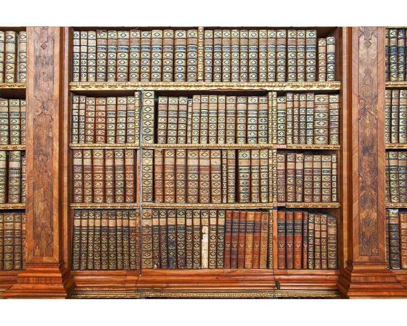Vliesové fototapety na zeď Knihovna | MS-5-0263 | 375x250 cm - Fototapety vliesové