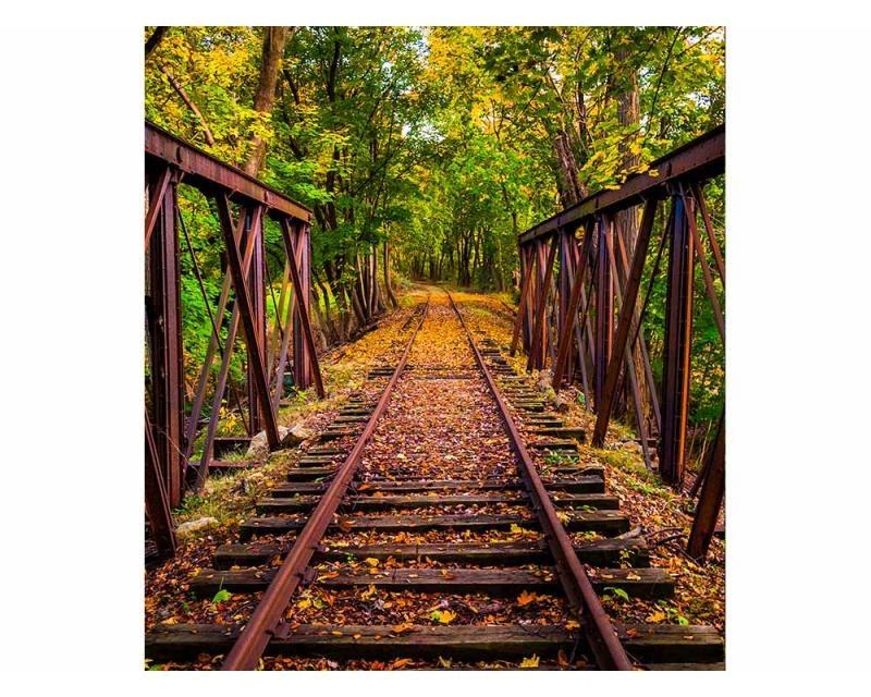 Vliesové fototapety na zeď Železnice v lese | MS-3-0055 | 225x250 cm - Fototapety vliesové
