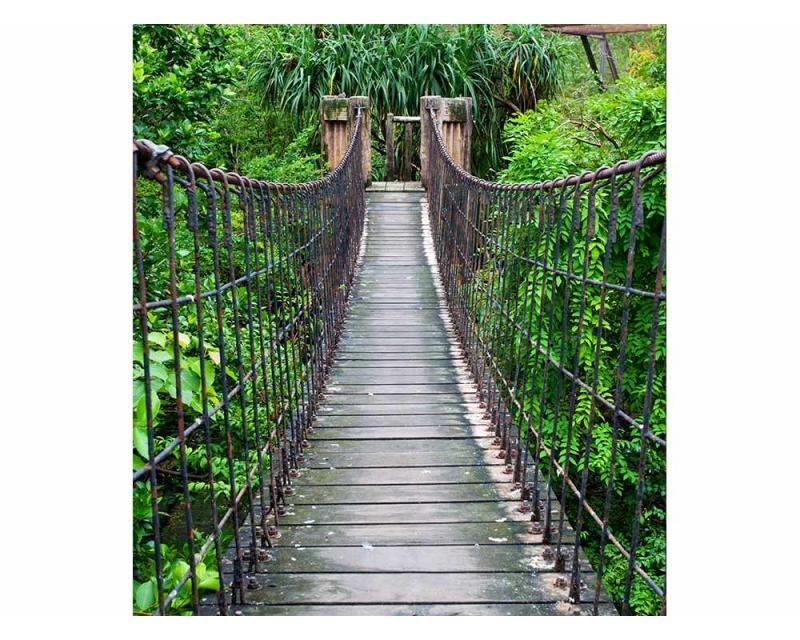 Vliesové fototapety na zeď Most v lese | MS-3-0084 | 225x250 cm - Fototapety vliesové