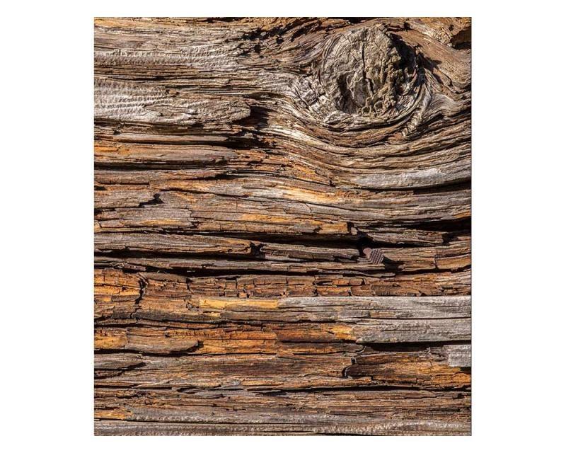 Vliesové fototapety na zeď Kůra stromu | MS-3-0159 | 225x250 cm - Fototapety vliesové