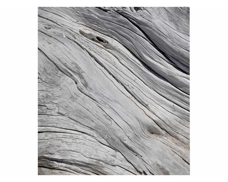Vliesové fototapety na zeď Struktura stromu | MS-3-0160 | 225x250 cm - Fototapety vliesové