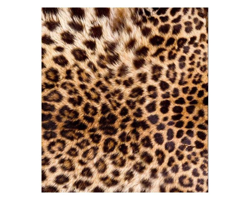 Vliesové fototapety na zeď Leopardí kůže | MS-3-0184 | 225x250 cm - Fototapety vliesové